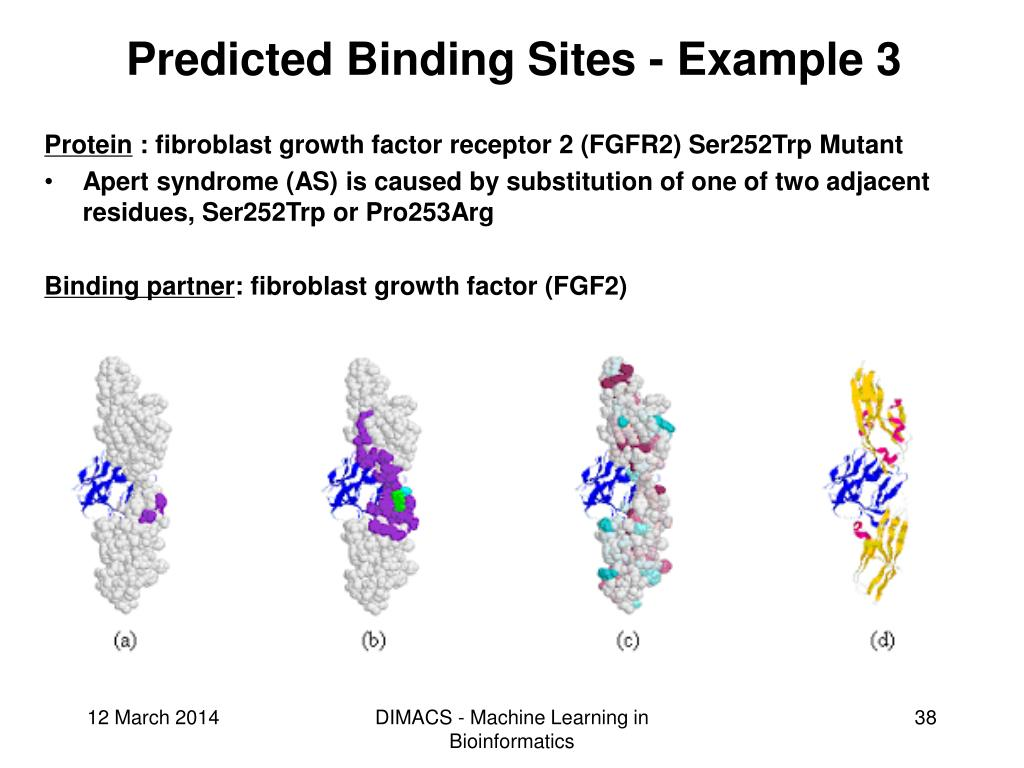 Predicted Binding Sites - Example 3