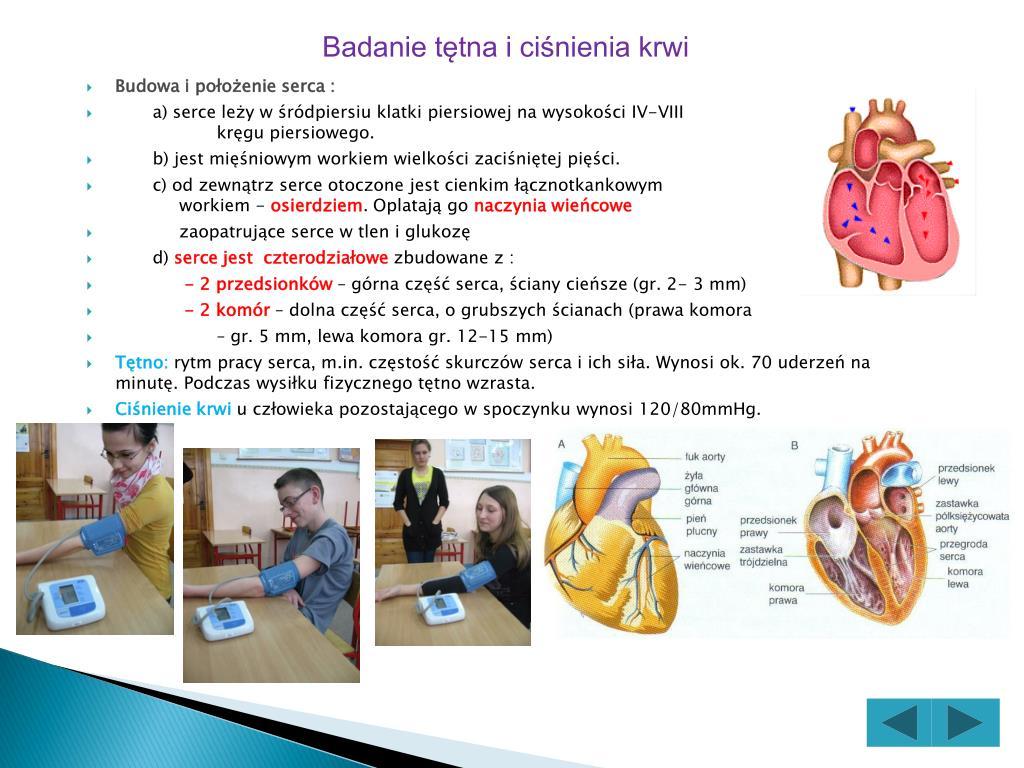 Badanie tętna i ciśnienia krwi