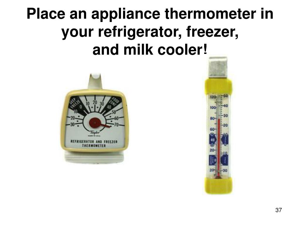 Place an appliance thermometer in your refrigerator, freezer,