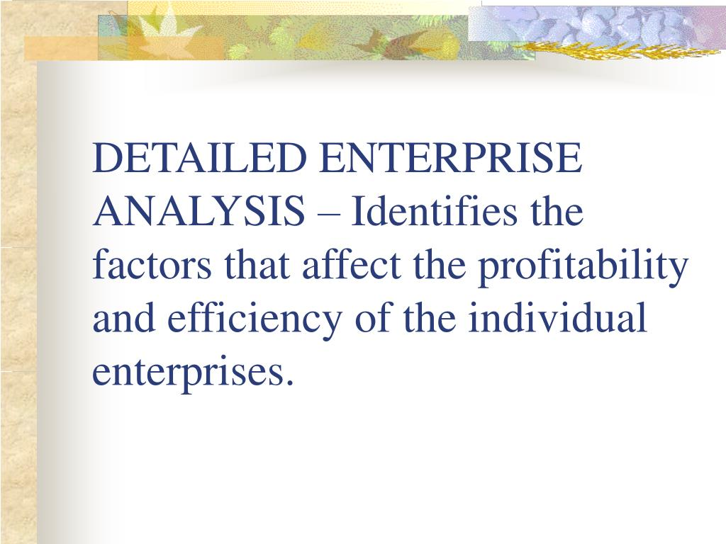DETAILED ENTERPRISE ANALYSIS – Identifies the factors that affect the profitability and efficiency of the individual enterprises.