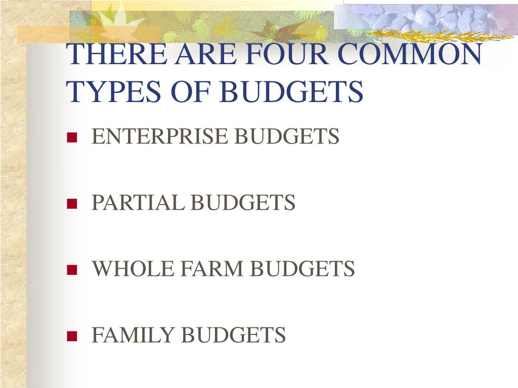 THERE ARE FOUR COMMON TYPES OF BUDGETS