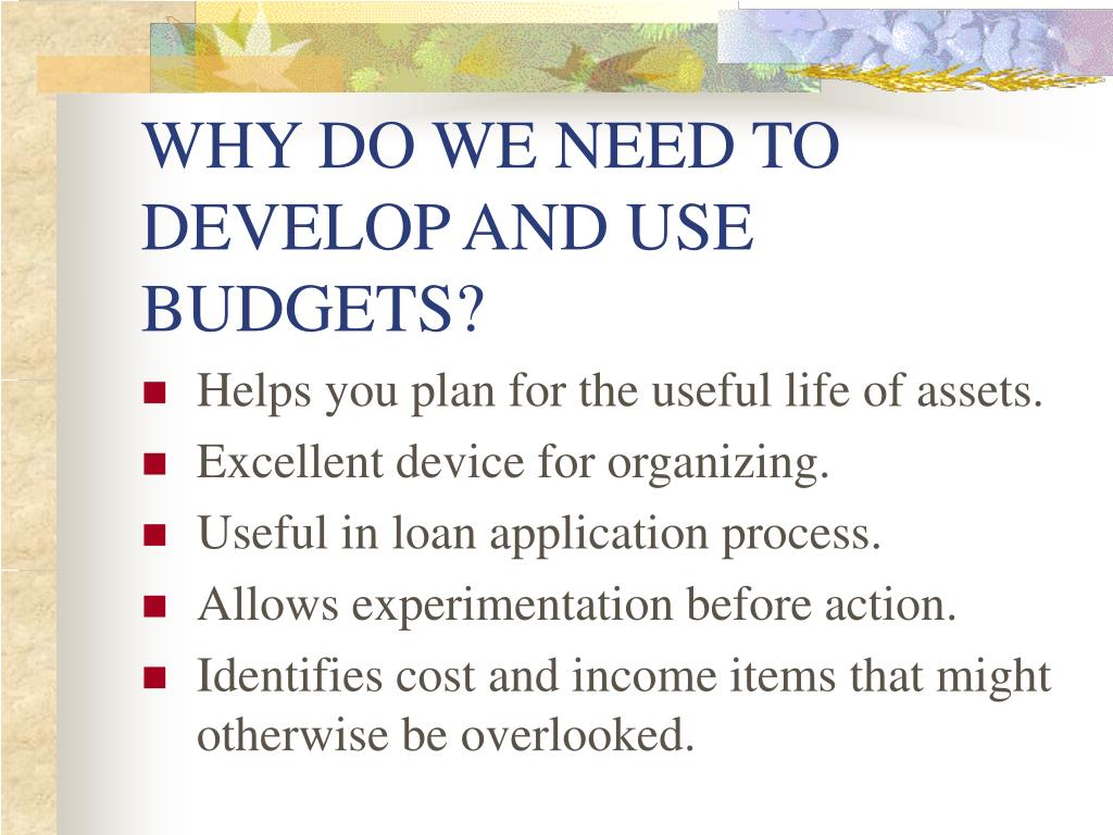 WHY DO WE NEED TO DEVELOP AND USE BUDGETS?