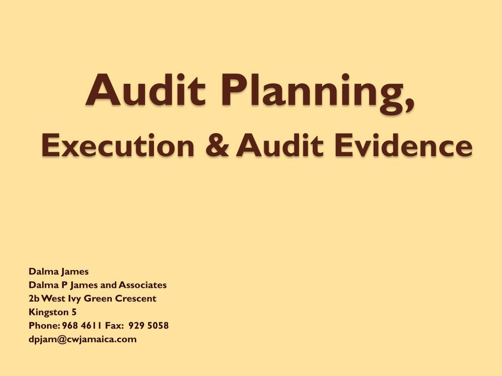 Audit Planning,