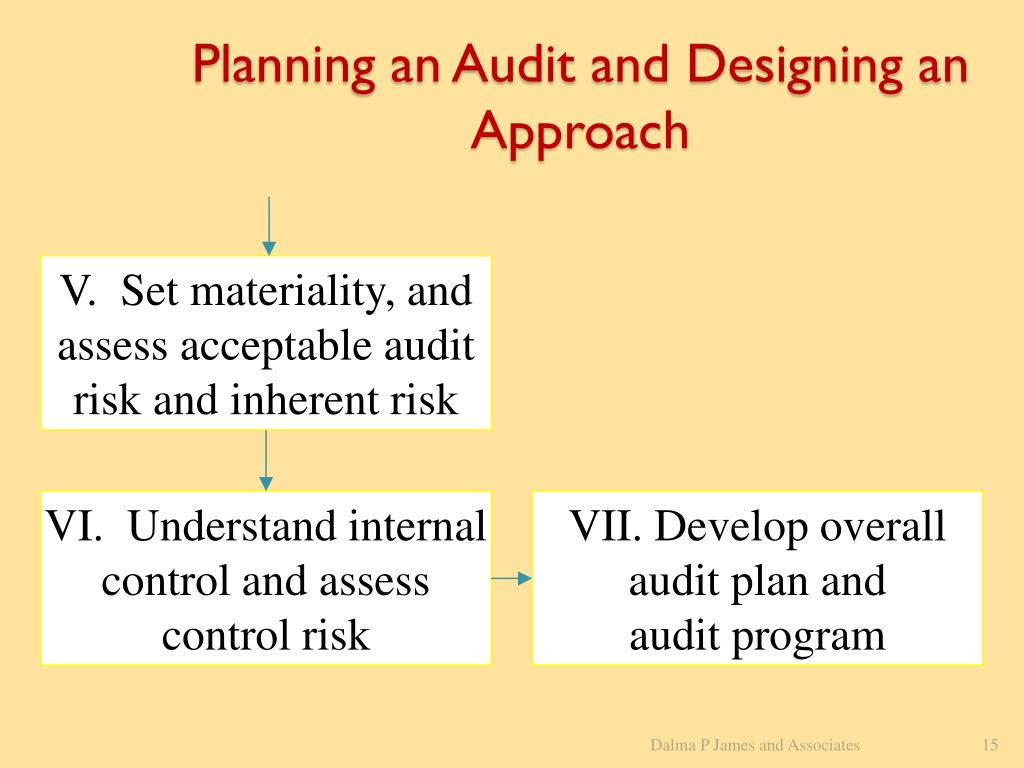 Planning an Audit and Designing an Approach
