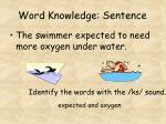 word knowledge sentence