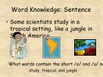 word knowledge sentence9