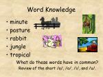 word knowledge5