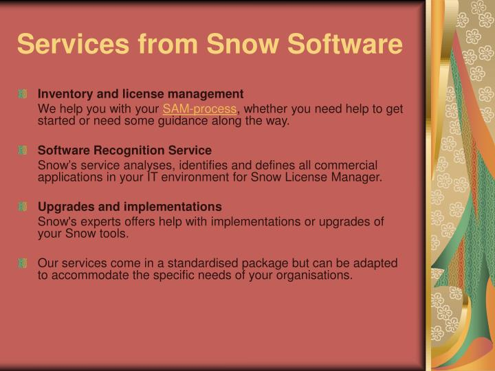 Services from snow software