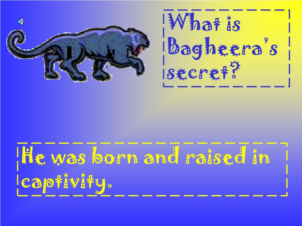 What is Bagheera's secret?