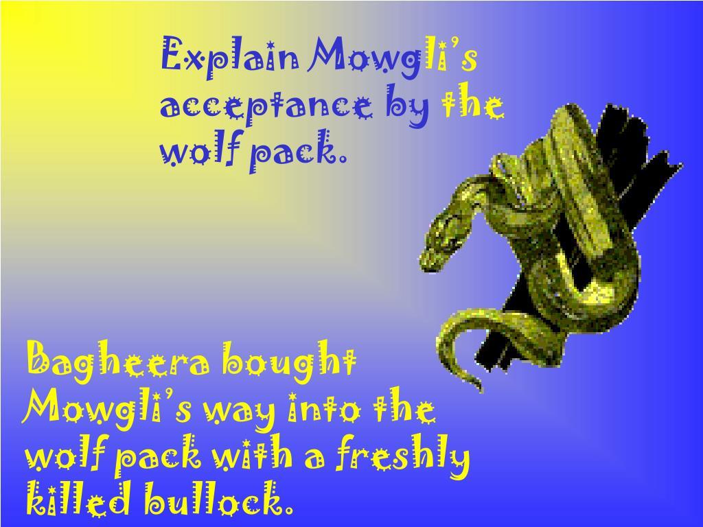 Explain Mowg