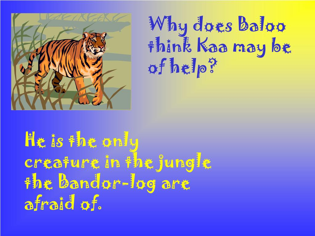 Why does Baloo think Kaa may be of help?