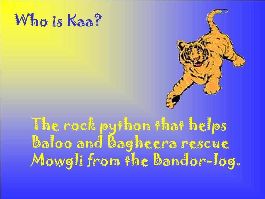 Who is Kaa?