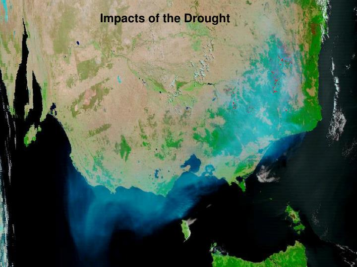 Impacts of the Drought