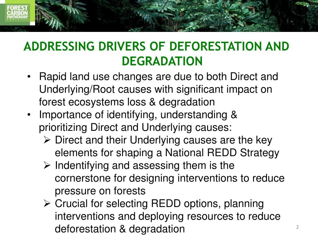 ADDRESSING DRIVERS OF DEFORESTATION AND DEGRADATION