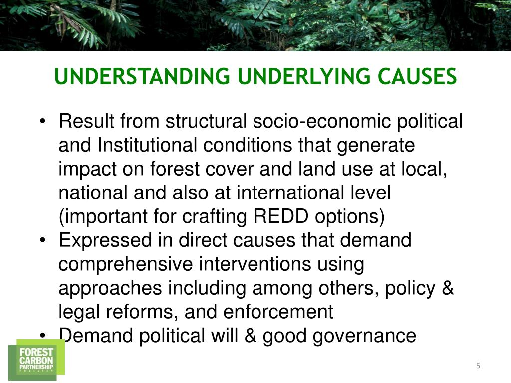 Result from structural socio-economic political and Institutional conditions that generate impact on forest cover and land use at local, national and also at international level (important for crafting REDD options)