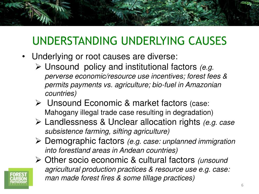 Underlying or root causes are diverse: