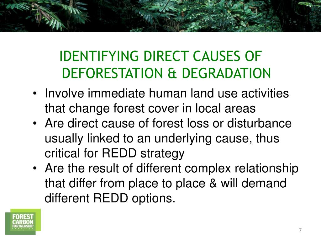 Involve immediate human land use activities that change forest cover in local areas
