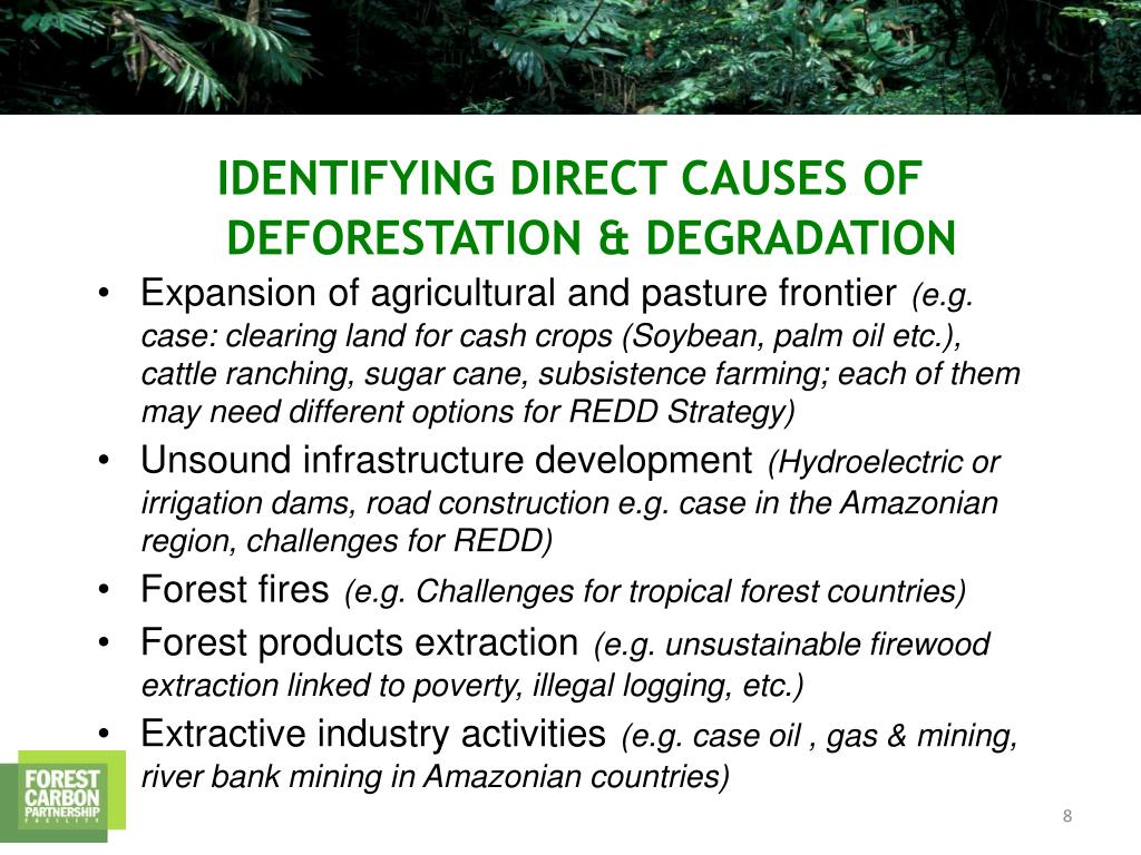 Expansion of agricultural and pasture frontier