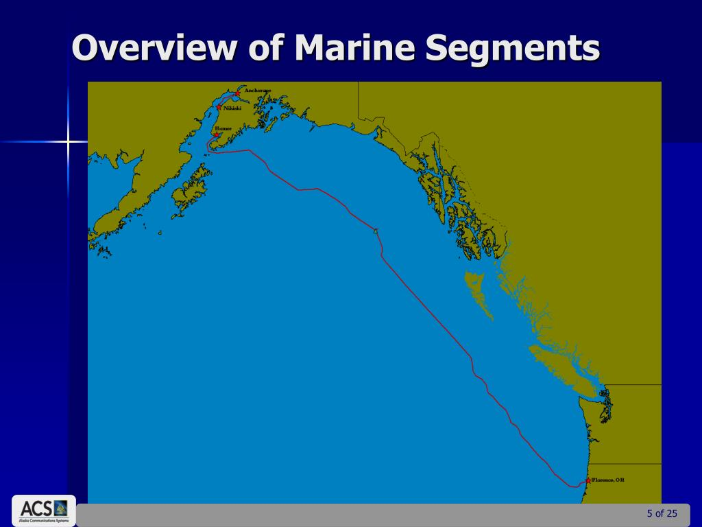 Overview of Marine Segments