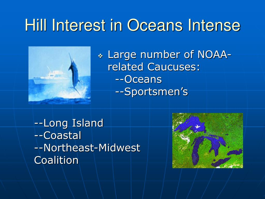 Hill Interest in Oceans Intense