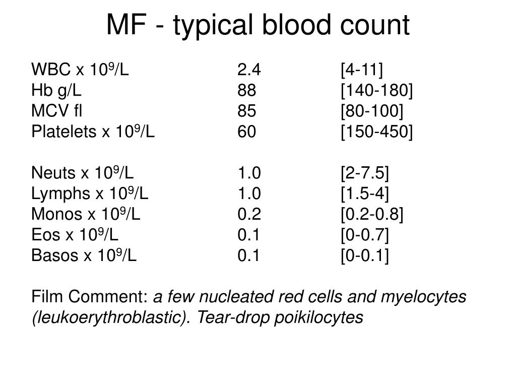 MF - typical blood count
