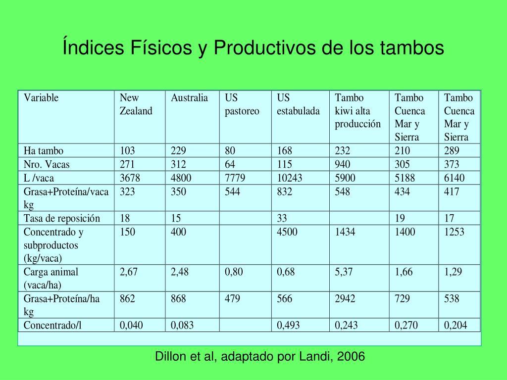 Índices Físicos y Productivos de los tambos
