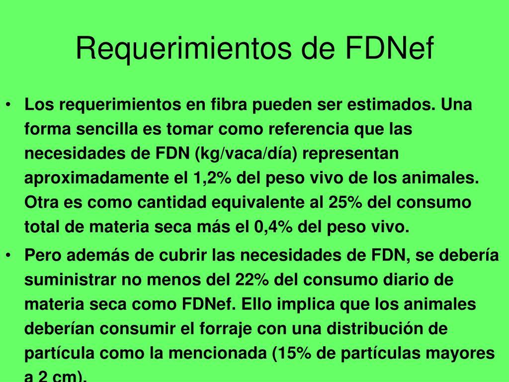 Requerimientos de FDNef