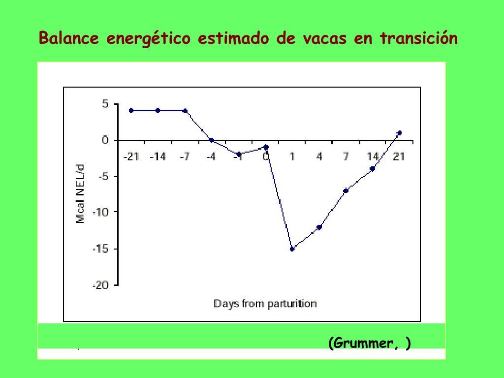 Balance energético estimado de vacas en transición
