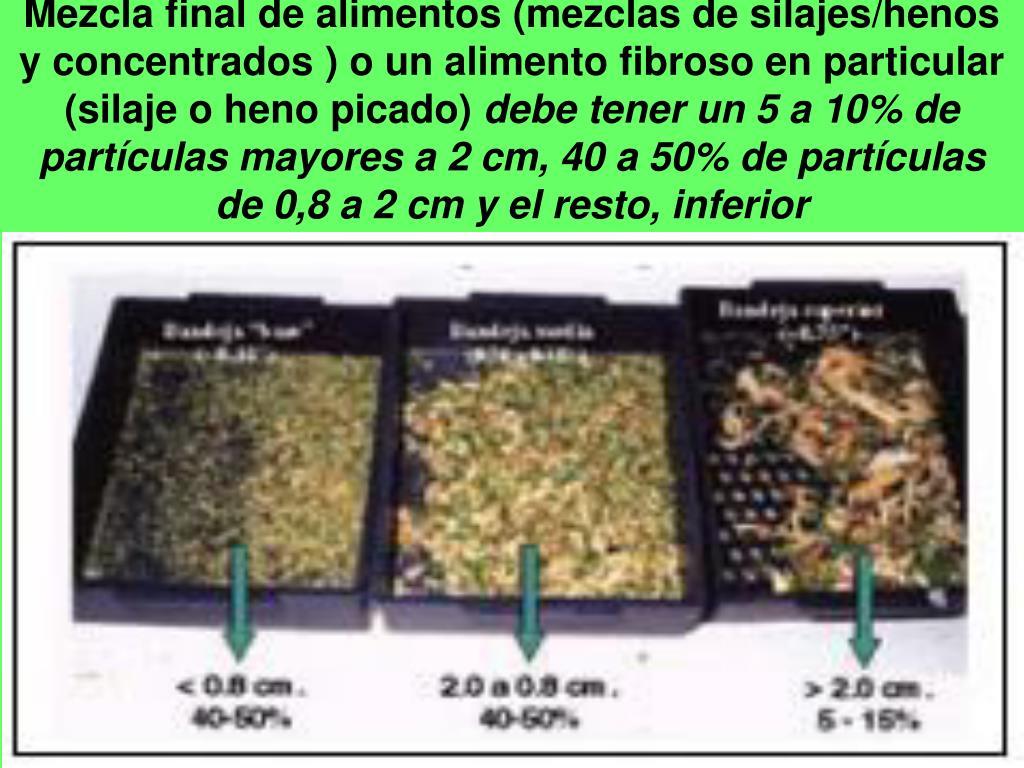 Mezcla final de alimentos (mezclas de silajes/henos y concentrados ) o un alimento fibroso en particular (silaje o heno picado)