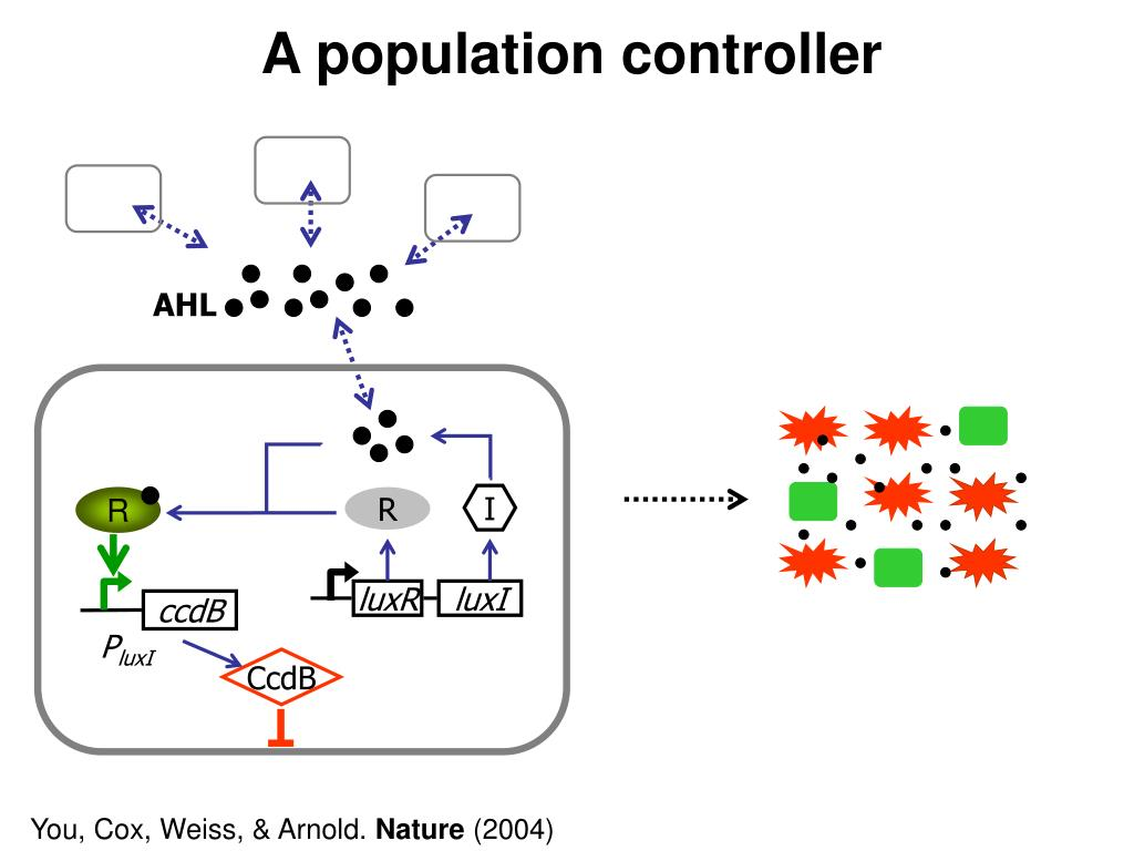 A population controller
