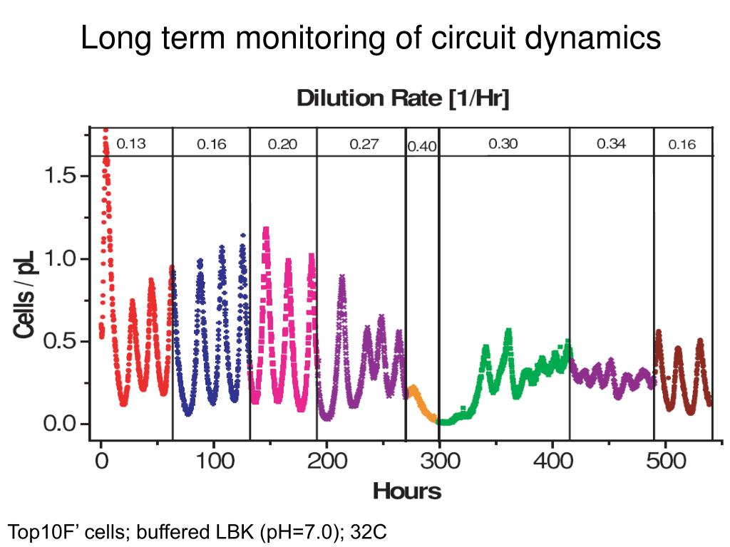 Long term monitoring of circuit dynamics