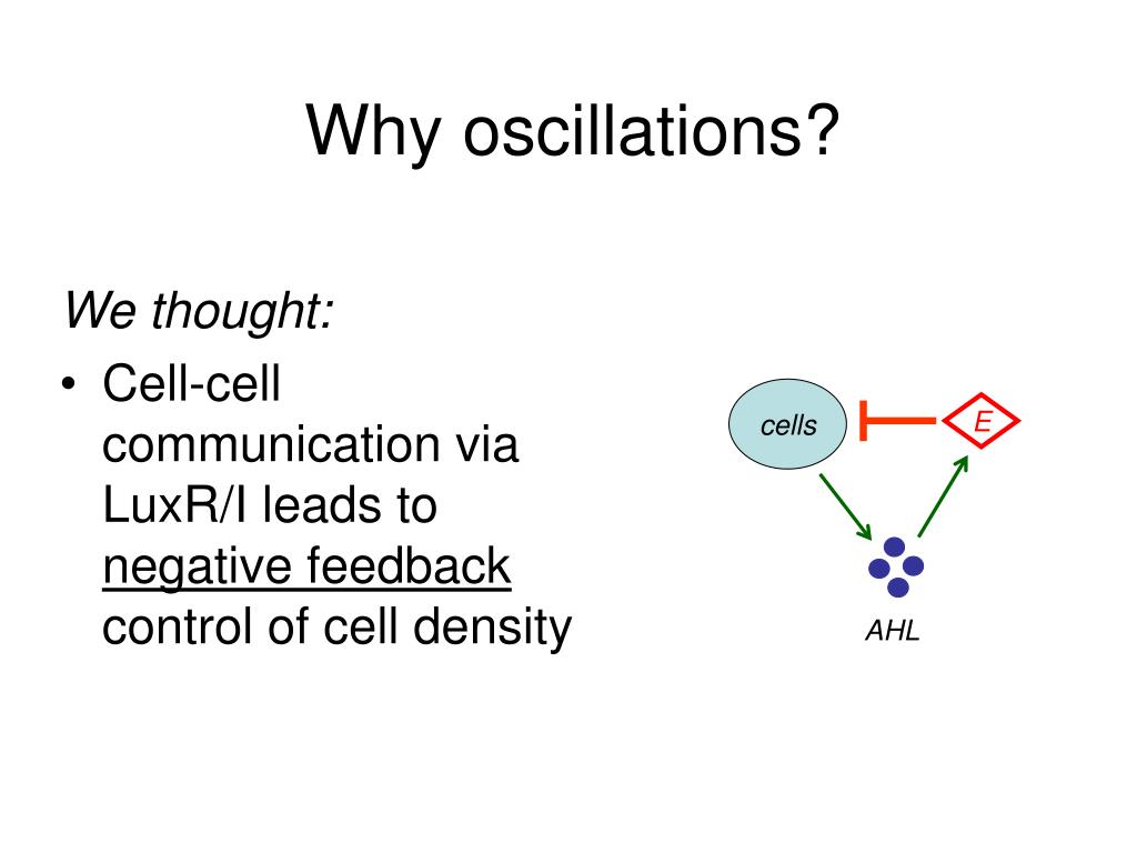 Why oscillations?
