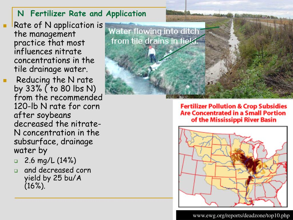 N  Fertilizer Rate and Application