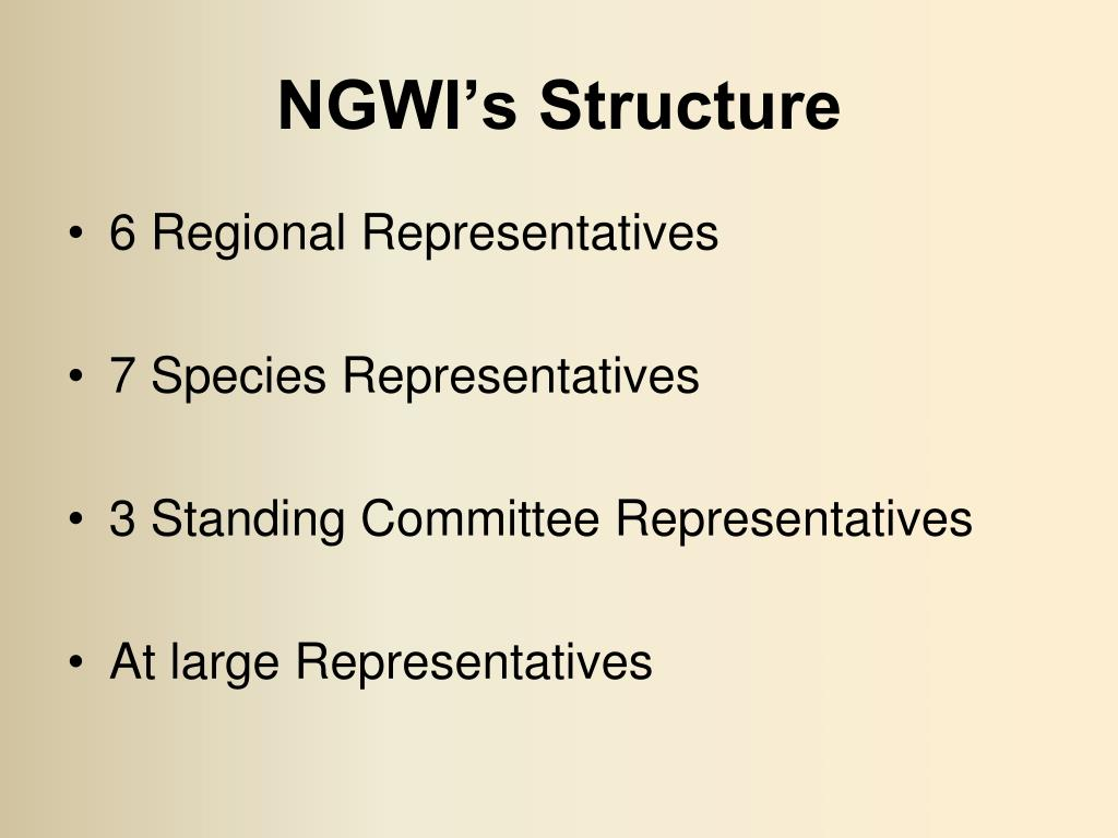 NGWI's Structure
