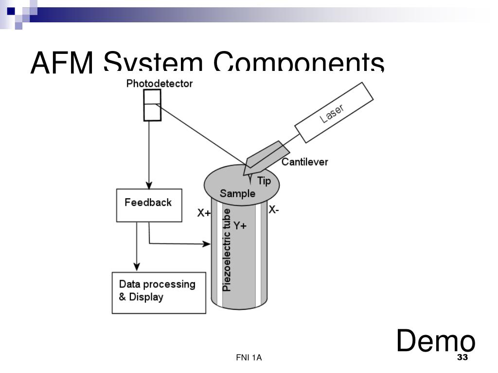 AFM System Components