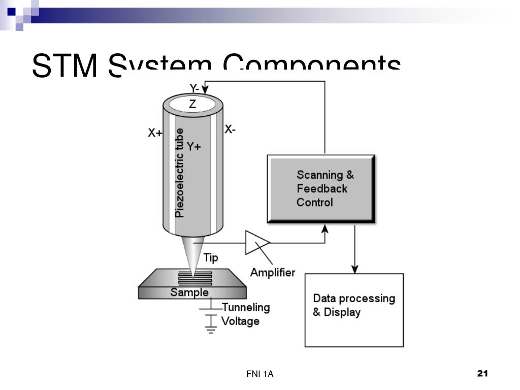 STM System Components