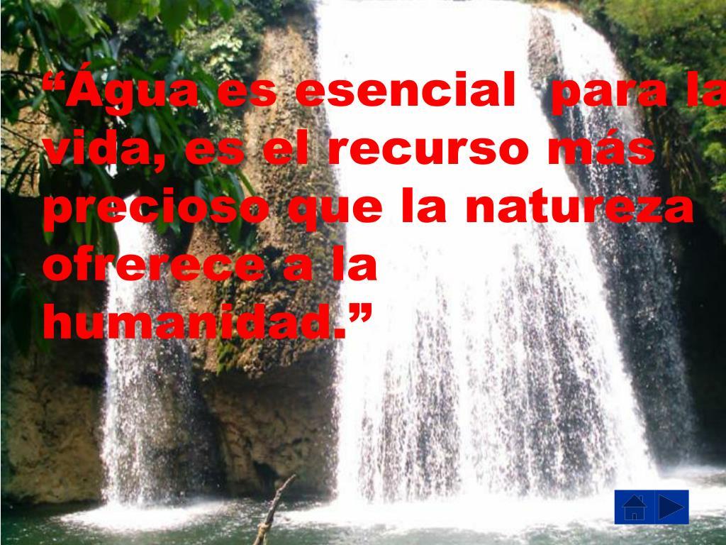 """""""Água es esencial  para la vida, es el recurso más precioso que la natureza ofrerece a la"""