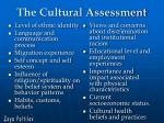 the cultural assessment38