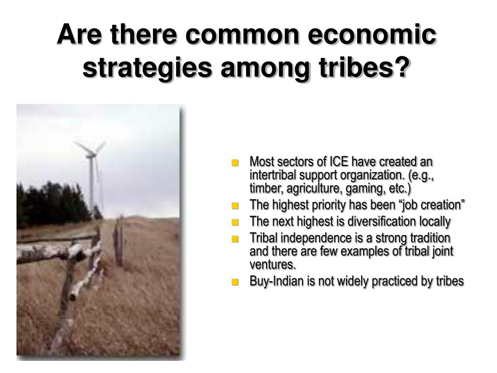 Are there common economic strategies among tribes?