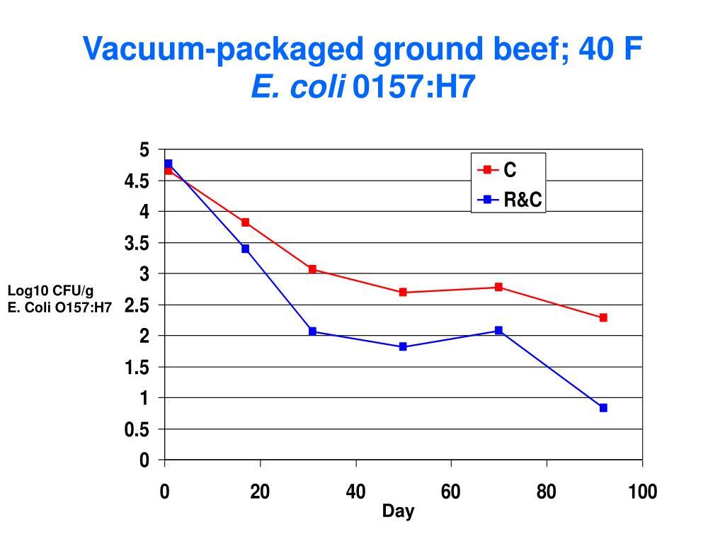 Vacuum-packaged ground beef; 40 F