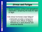 stress and fatigue