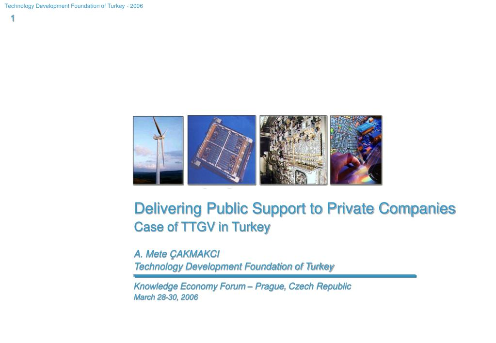 Delivering Public Support to Private Companies