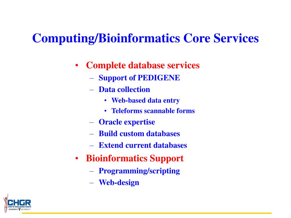Complete database services