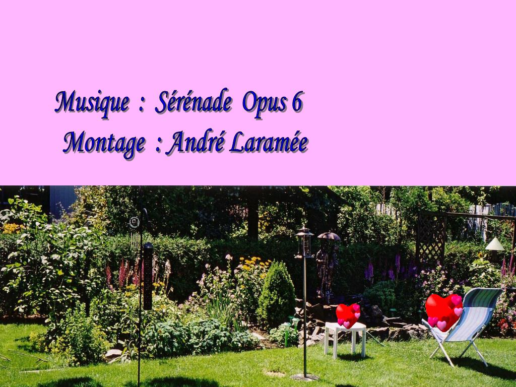 Musique  :  Sérénade  Opus 6