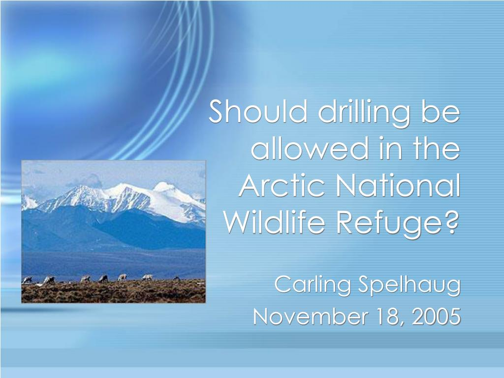 Should drilling be allowed in the Arctic National Wildlife Refuge?