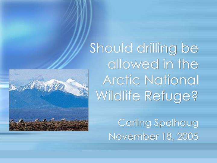 Should drilling be allowed in the arctic national wildlife refuge