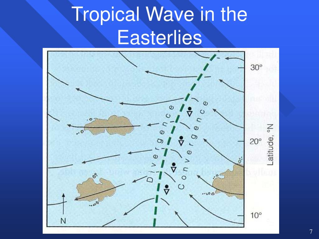 Tropical Wave in the Easterlies