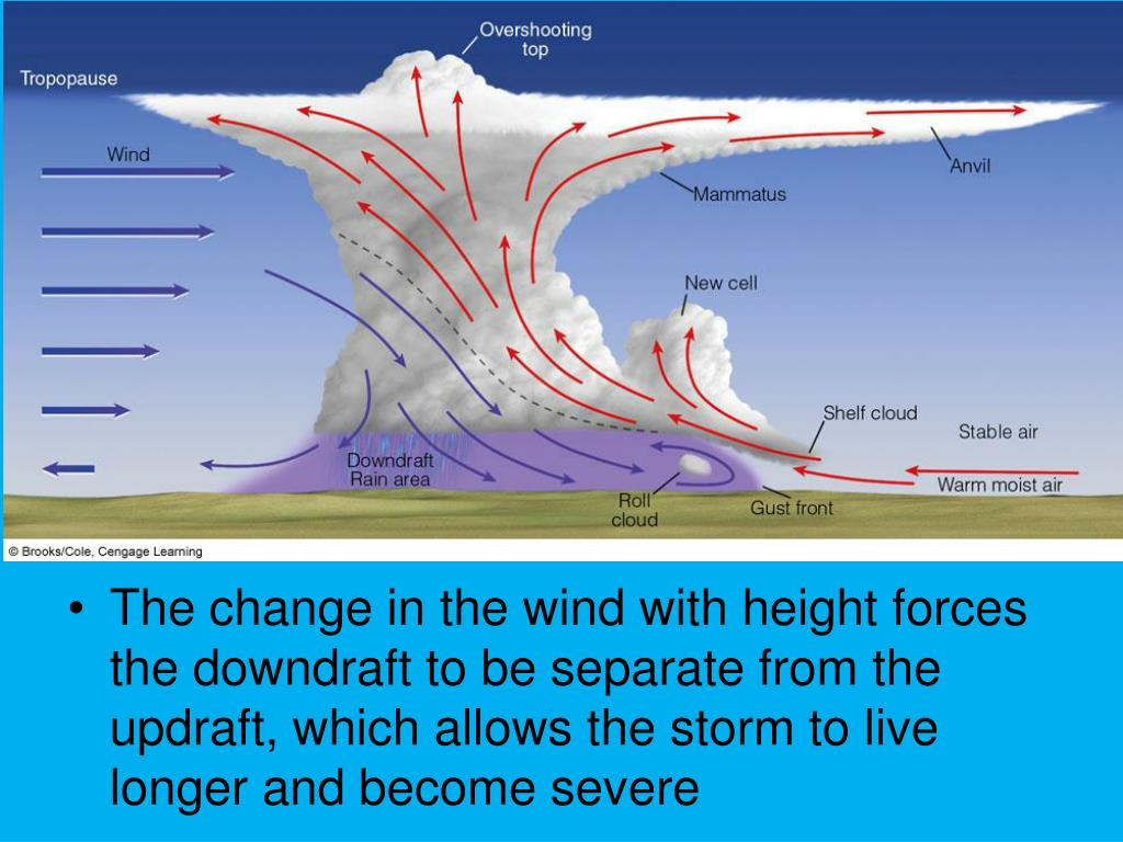 The change in the wind with height forces the downdraft to be separate from the updraft, which allows the storm to live longer and become severe