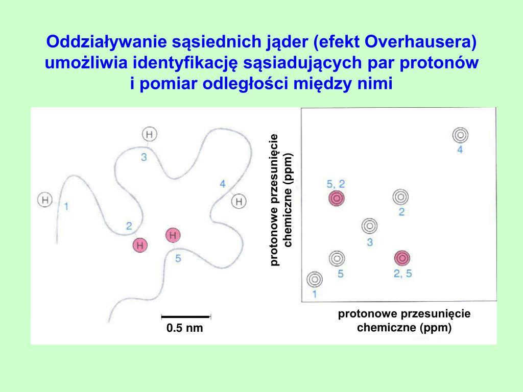 Oddziaływanie sąsiednich jąder (efekt Overhausera) umożliwia identyfikację sąsiadujących par protonów   i pomiar odległości między nimi