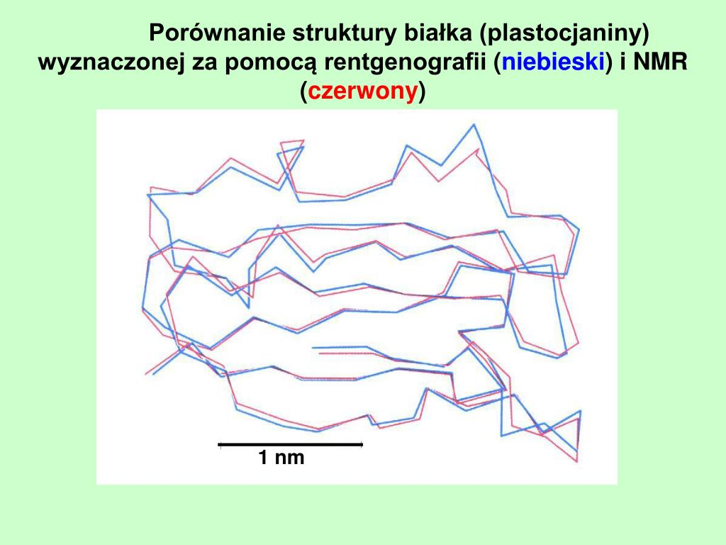 Porównanie struktury białka (plastocjaniny) wyznaczonej za pomocą rentgenografii